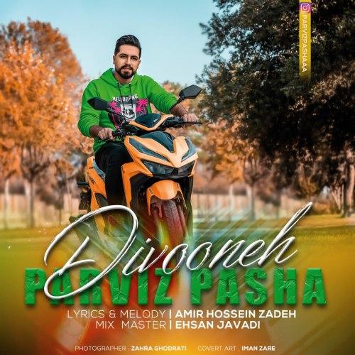 دانلود موزیک جدید پرویز پاشا دیوونه